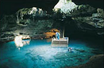 diving devils den florida